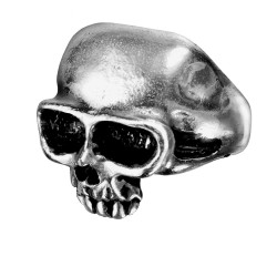 Death Skull Pewter Mens Dreadpunk Ring LABEShops Home Decor, Fashion and Jewelry