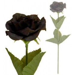Single Black Rose LABEShops Home Decor, Fashion and Jewelry
