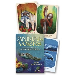 Animal Voices Oracle Cards LABEShops Home Decor, Fashion and Jewelry