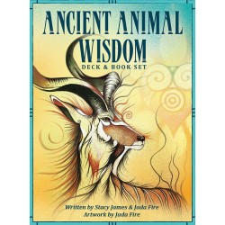 Ancient Animal Wisdom Oracle Set LABEShops Home Decor, Fashion and Jewelry