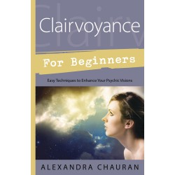 Clairvoyance for Beginners LABEShops Home Decor, Fashion and Jewelry