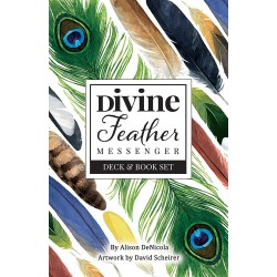 Divine Feather Messenger Cards & Book Set LABEShops Home Decor, Fashion and Jewelry