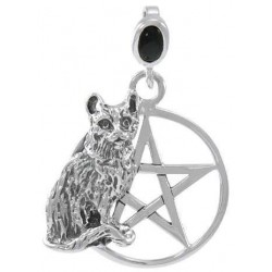 Cat Familiar Pentacle Laurie Cabot Pendant LABEShops Home Decor, Fashion and Jewelry