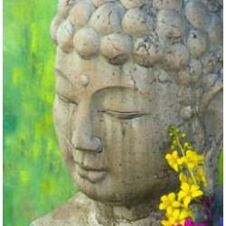Serene Buddha Greeting Card with CD LABEShops Home Decor, Fashion and Jewelry