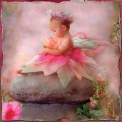 Baby Fairy Greeting Card with CD LABEShops Home Decor, Fashion and Jewelry