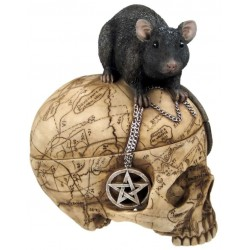 Salem Witch Skull and Mouse Box LABEShops Home Decor, Fashion and Jewelry