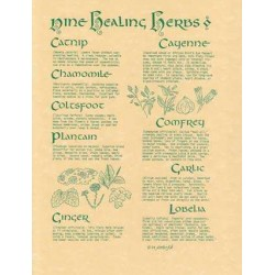 9 Healing Herbs Parchment Poster LABEShops Home Decor, Fashion and Jewelry